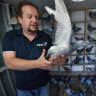 Let them fly: Precious pigeons offer peaceful purpose this Anzac Day