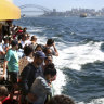 'Fast is not best': day-trippers give their verdict on Manly ferries
