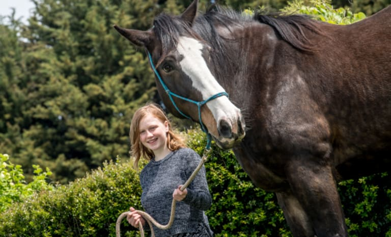 Gentle giant: Shamanii, 13, with Humphrey the equine therapy horse.