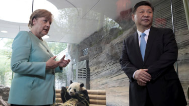 Eyeing China: German Chancellor Angela Merkel and Chinese President Xi Jinping, right, meet panda bears at the Zoo in Berlin last year.