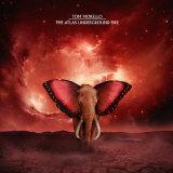 Tom Morello's new album The Atlas Underground Fire.
