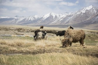 The Wakhan corridor is Afghanistan's only border with China.