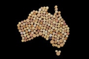 Map of Australia in wine corks.