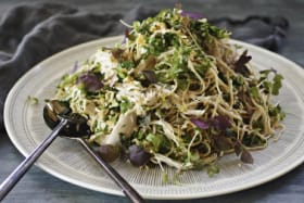 Poached chicken and cold soba noodle salad.