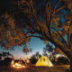 Despite the discomfort and packing, Australians love to camp. With many missing their usual jaunts due to the coronavirus, campsites will likely be in hot demand.