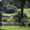 How much nature is enough? Two hours a week, doctors say