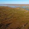Desperately dry Lower Darling River gets a decent drink