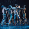 Firestarter traces the rise and rise of the Bangarra Dance Company