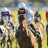 Derby favourite 'a couple of lengths' better for shot at the boys