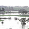 Government used wrong data to award $1m in drought relief to waterlogged shire