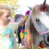 Children's COVID-19 reward parties soften harsh reality, but animal events feel greatest pinch