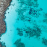 Reef economics: Why losing coral to climate change could cost WA millions