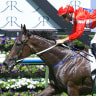 Oliver looks for a double grand slam with Seabrook in Golden Slipper