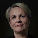 Labor's Tanya Plibersek is editing a book about life post-COVID.