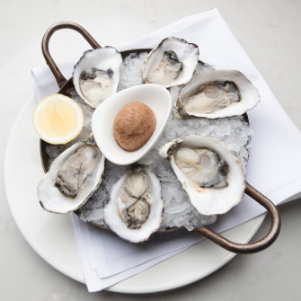 Oysters at Steer Dining Room.