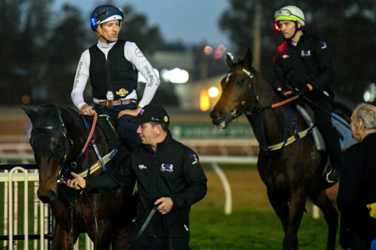 Enough said: Hugh Bowman on Winx and Ben Caddell  on Unforgotten at trackwork on Thursday.