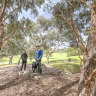 Experts say green spaces with a diverse range of native species can deliver benefits to a range of outcomes. Pictured here is the Koonung Creek Reserve in North Balwyn, Melbourne.