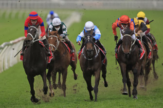 Verry Elleegant drives through on the inside to beat Riodini and Think It Over (right) in the George Main Stakes.