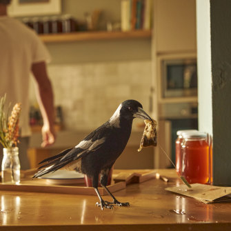 Kitchen aid from a magpie in Penguin Bloom.