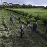 Golf range dispute highlights fight for Melbourne's green wedges