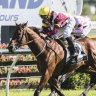 Fierce Impact owners favour Cox Plate tilt over stud