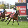 No restriction on Melbourne Cup weight penalty for Incentivise