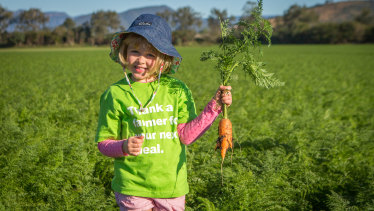 Australia is facing its largest carrot oversupply in 25 years.