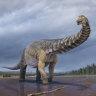 Discovery of Australia's largest dinosaur to challenge America's dino dominance