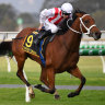 Thornton looking to triple group 1 tally in Adelaide campaign