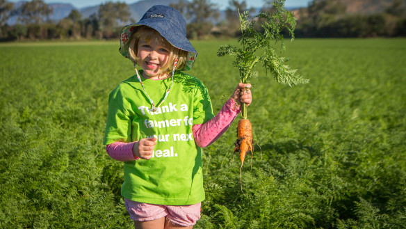 Australia faces biggest carrot glut in 25 years, time to make vodka