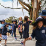By tree or sea, schools expect Melbourne escapees