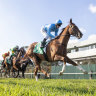 Waterhouse closing on deal for just her second-ever Everest runner