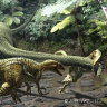 Largest Australian carnivorous dinosaur found in Queensland