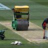 Sales pitch: Drop-in wickets not the problem as cricket struggles for space