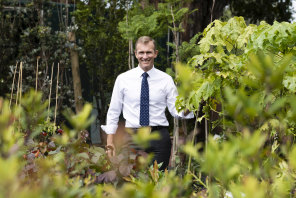 Planning Minister Rob Stokes, pictured at Randwick City Council Nursery, says boosting the city's tree canopy will help lower heat, provide shade and improve neighbourhoods.