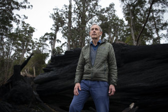 Environmentalist and former Greens leader Bob Brown inspects burnt trees that were once home to swift parrots.