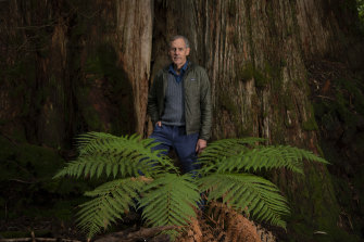 Bob Brown Foundation is launching legal action against native forest logging in Tasmania.