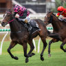 Rothfire, Victorem shorten for upcoming group 1s