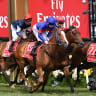 Single Gaze in Melbourne Cup mix despite future being up in the air
