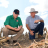 Inadequate drought preparation may prove to be political disaster too