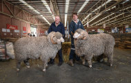 Craig Dewar, left, and son Lachlan Dewar with two of their prized rams.