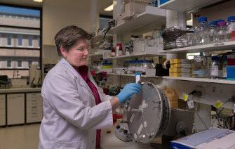 Professor Elizabeth Gardiner at the John Curtin School of Medical Reseach at Australian National University.
