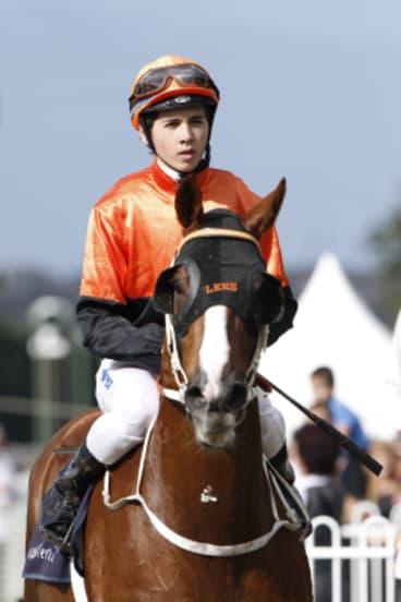 Brothers in arms: Jake Hull will ride Red Letter Day for his brother Ben in the Maclean Cup.