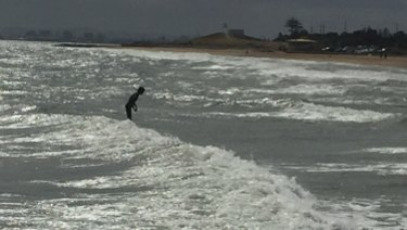 "Surfing in the bay: a ""groyne rider"" in action."