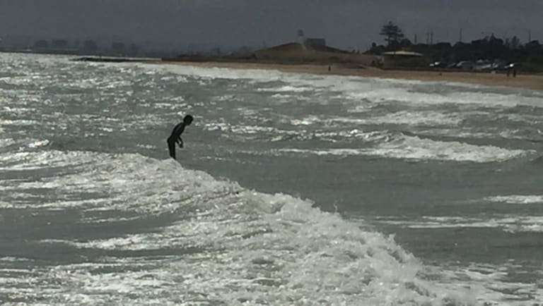 """Surfing in the bay: a """"groyne rider"""" in action."""