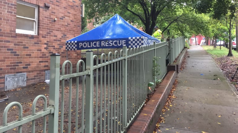 A search is under way in the gardens of the public housing block in Surry Hills.