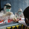 A boy waits to receive a coronavirus antibody test from health workers at a village in Bali, Indonesia, Wednesday, May 27, 2020. (AP Photo/Firdia Lisnawati)