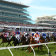Australian stayer Vow And Declare wins the Melbourne Cup