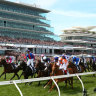 One industry, one race: Melbourne Cup should be spring focus