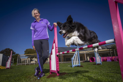 Pilates, travel and adoring fans: Star show dog laps it up